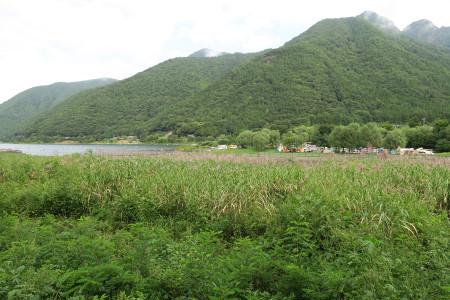 湖畔のテントサイトを望む