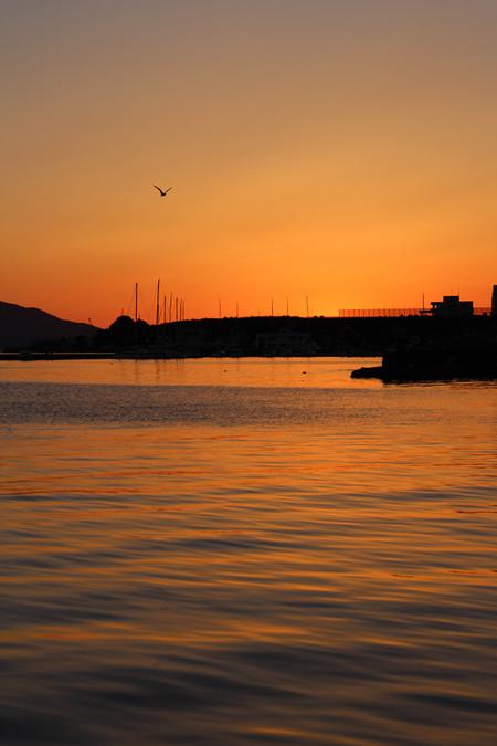 江浦湾の夕暮れ