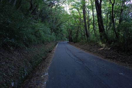 長尾峠への道