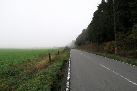 霧の牧草地