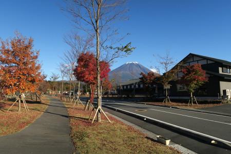 あさぎりフードパークから紅葉と富士山
