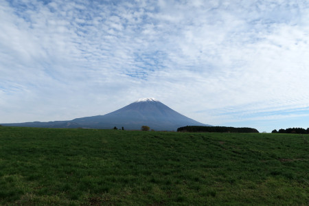 牧草地からの富士山