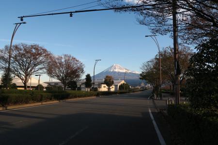 富士市街から振り返っての富士山