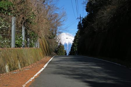 大代峠と富士山