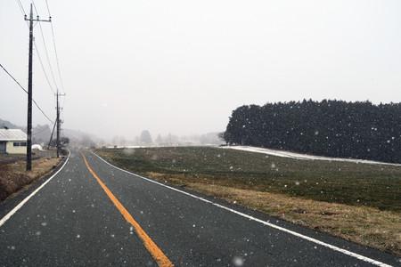 雪の朝霧高原