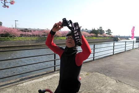 河津川沿いの桜を撮影