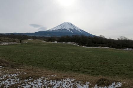 牧草地の残雪と富士山