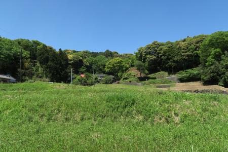 県道80号沿いの景色
