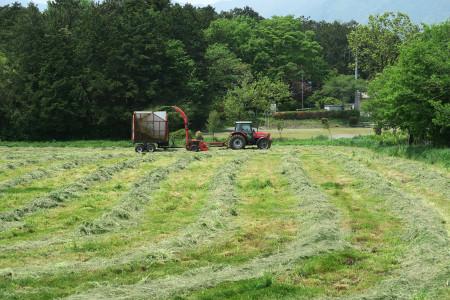 朝霧高原での牧草作業