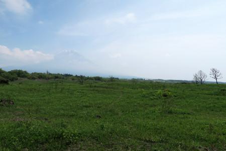 県境からの富士山