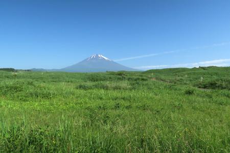 東富士演習場からの富士山