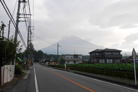 登山道からの富士山