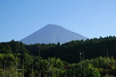 国道469号間近の富士山
