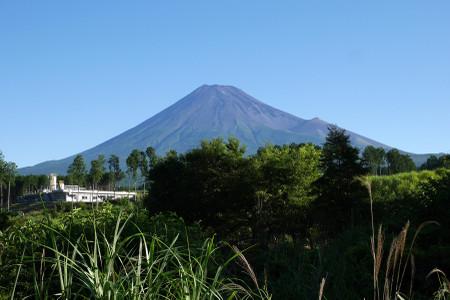 国道469号からの富士山