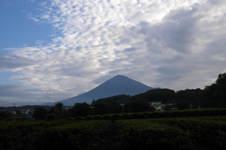 早朝の富士山と雲