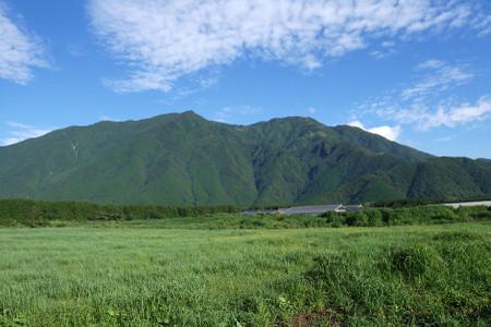 牧草地越しの山々