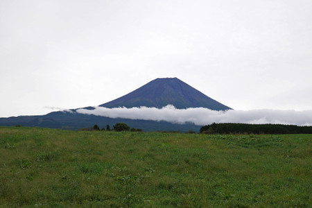 牧草地越しの富士山