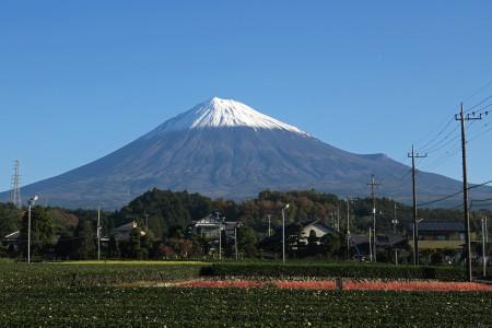 20日朝富士宮市内からの富士山