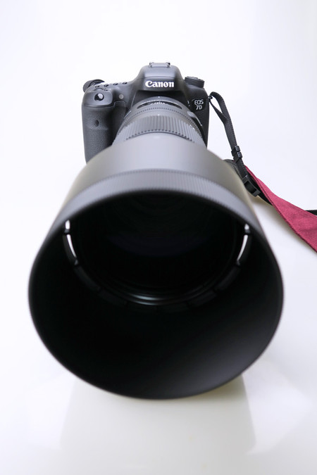 Canon EOS 7D Mark Ⅱ+SIGMA 150-600mm F5-6.3 DG OS HSM Contemporary