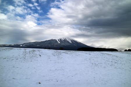 雪の朝霧高原牧草地と富士山