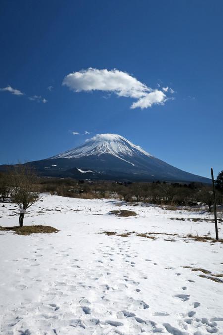 雪原と富士山