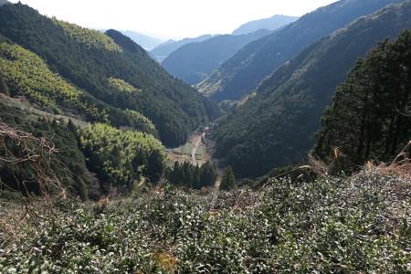 平山地区を見下ろす光景