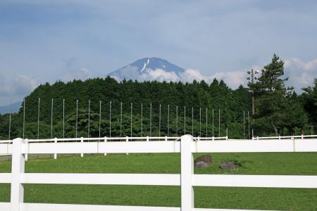 馬頭塚付近からの光景