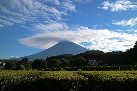富士宮市街からの夏富士