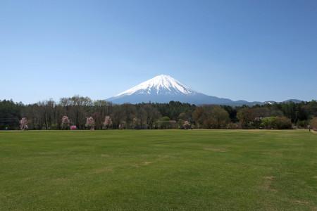 道の駅なるさわ付近からの富士山
